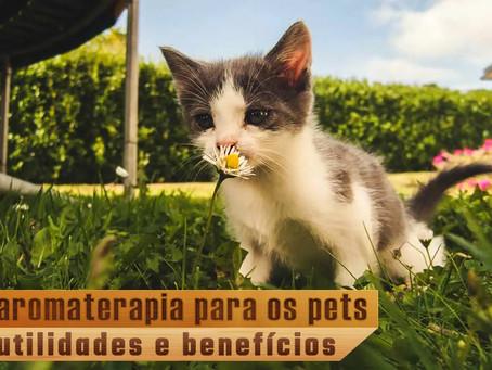 Aromaterapia para animais: conheça utilidades e benefícios