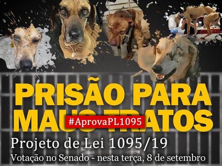 Ato em Brasília: protetores vão pedir aprovação do PL 1095/19 (aumento de pena para maus-tratos)