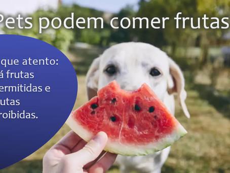 Pets podem comer frutas? Descubra as melhores opções