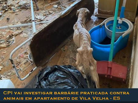 CPI vai apurar caso de animais abandonados e mortos em apartamento no ES