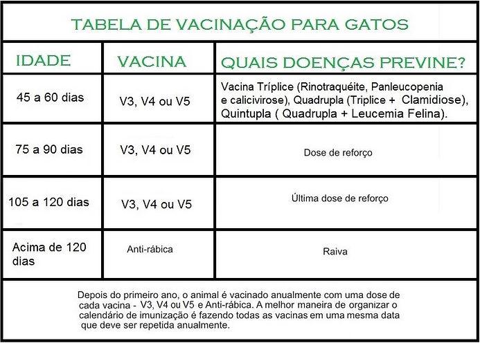 tabela-de-vacinacao-para-gatos.jpg