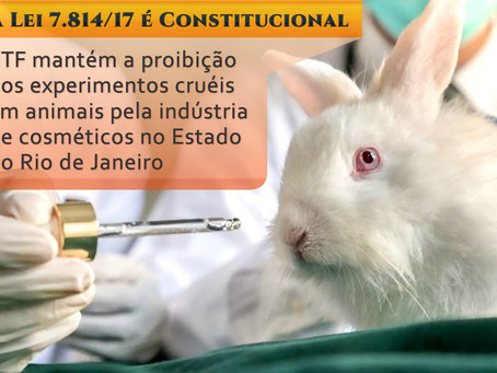 STF legitima Lei do RJ que proíbe testes em animais para cosméticos