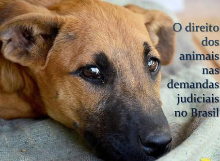 Animais possuem o direito de figurar no polo ativo de demandas judiciais