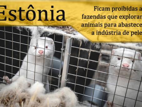 Estônia aprova proibição da criação de animais para a indústria de peles