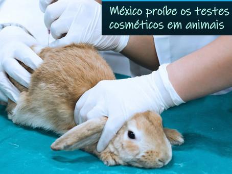 México proíbe os testes cosméticos em animais