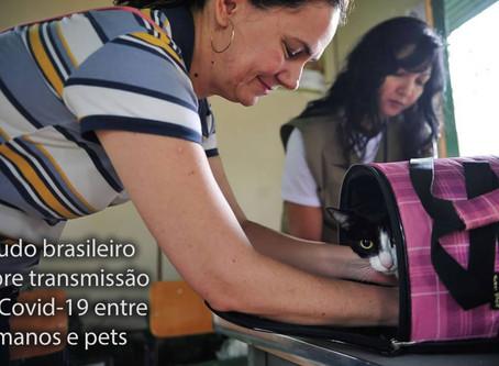 Pesquisa brasileira investiga transmissão de Covid-19 entre humanos e pets