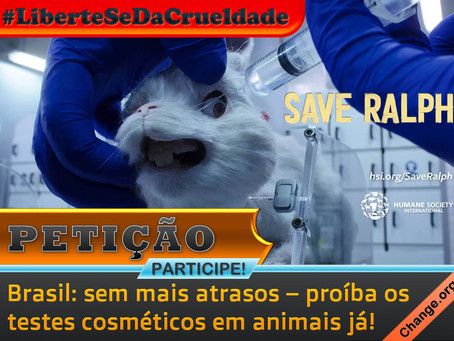Petição: proibição dos testes cosméticos em animais no Brasil