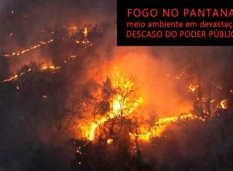 Fogo no Pantanal: destruição em meio ao descaso do governo