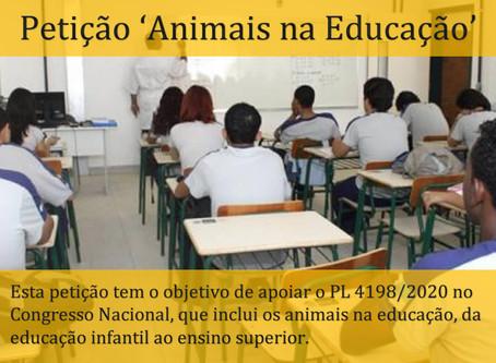 Projeto de Lei prevê educação em defesa dos animais em todo o ensino