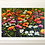 Thumbnail: The Floral Dance-Being Framed
