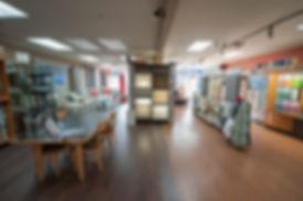 alpins interiors store