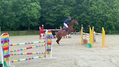 Abreuvoir transportable pour chevaux de compétition.