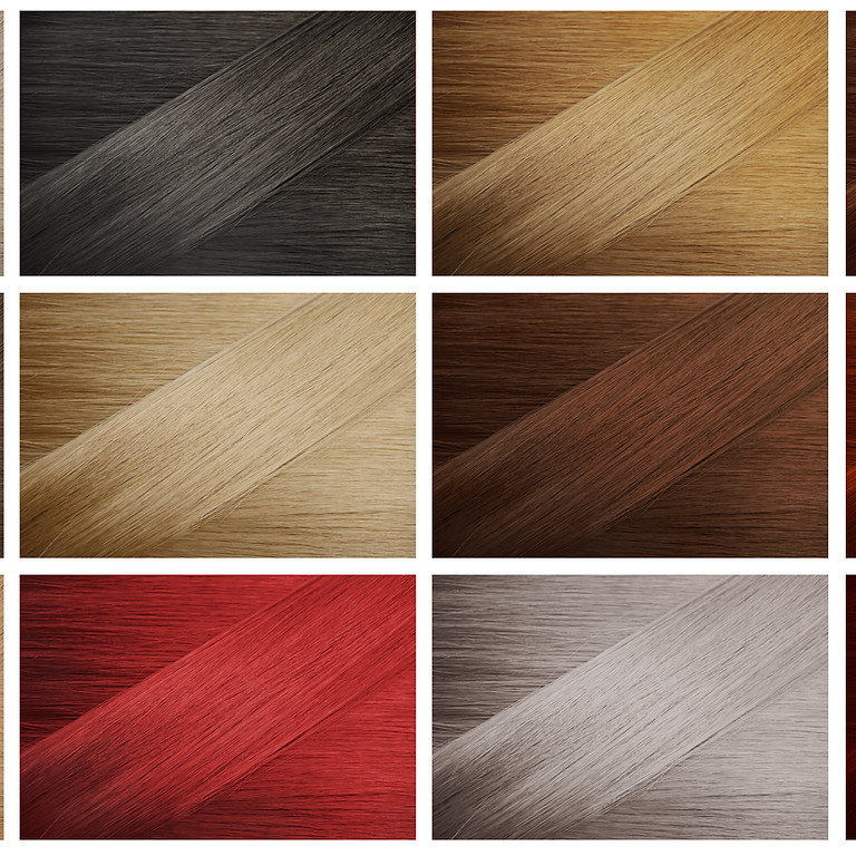 Advance Hair Cut & Color Class