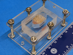 Can a 3-D printer generate human organs ... in outer space?