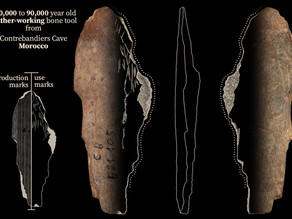 Earliest bone tools to produce clothing found in Morocco -- 120,000 years old