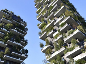 Africa is set to get its first vertical forest