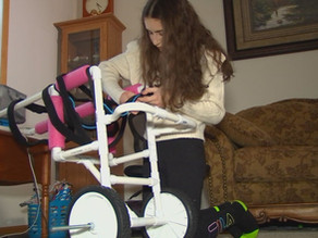 Kind-hearted high school student creates wheelchairs for pets