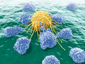 Researchers engineer Natural Killer cells to destroy cancer cells but leave the rest alone