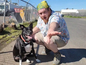 Sam Green is walking his dog across the country to combat homelessness
