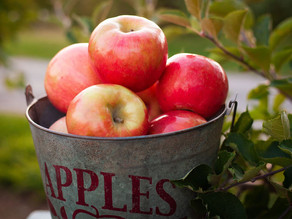 Getting to the core of a more nutritious apple