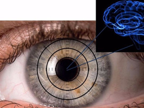 When it comes to predicting Alzheimer's disease risk, the EYES have it