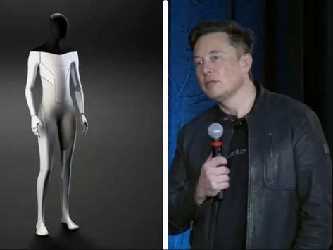 Elon Musk says Tesla's robot will make physical work a 'choice'