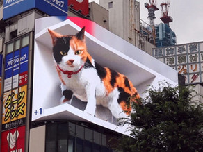 Giant 3D cat comes to life in amazing Tokyo display