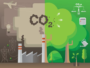 The Brighter 5:  Five important new technology advancements towards carbon neutrality