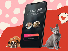 German animal shelter creates Tinder for pets to help them find new homes