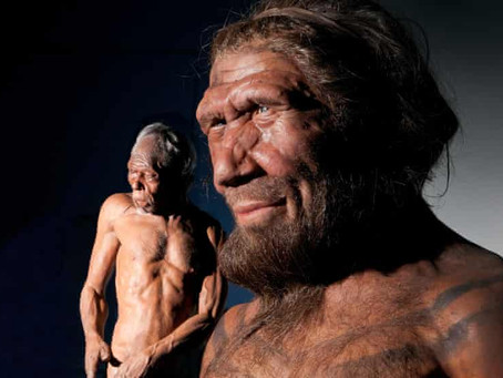 When and why did human brains decrease in size 3,000 years ago?