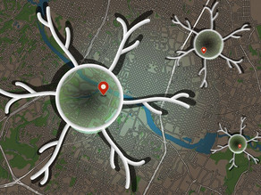 Scientists discover a new type of brain cell that could help detect distance