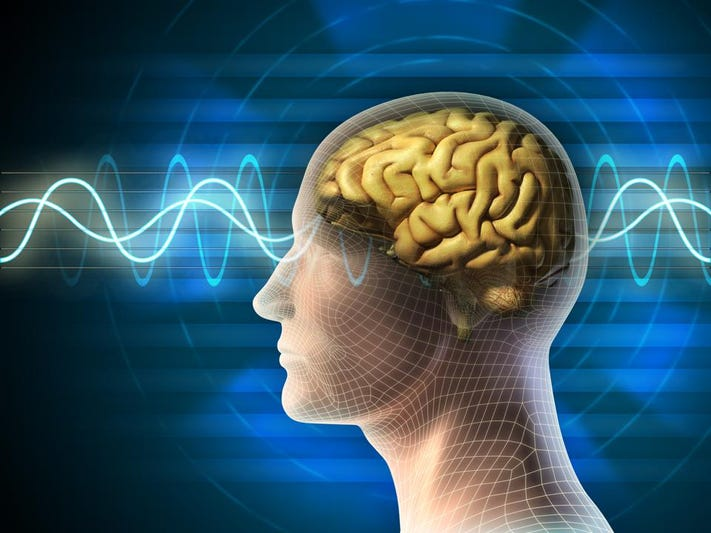 Scientists uncover brain's switching system used in information processing and memory