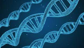 Crime Busting: Study provides first evidence of DNA collection from air