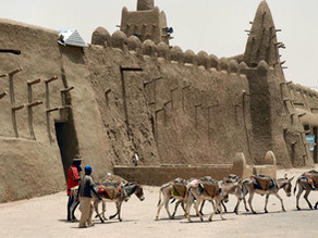 Generations of Everyday Heroes Have Protected Timbuktu's Treasure for Centuries!
