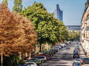 Street trees close to the home may reduce the risk of depression
