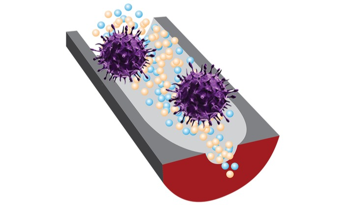 New DNA sensor can quickly determine whether viruses are infectious