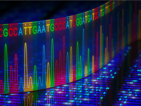 Researchers have now sequenced the entirety of the human genome — including the missing parts