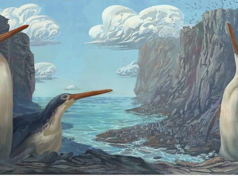 School kids in New Zealand discover new species of giant penguin
