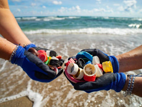 The Brighter 5:  Five important non-profits looking to clean our oceans