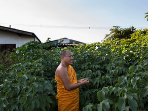 Meet the Buddhist monk making PPE and robes out of recycled plastic bottles
