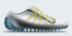 edit shoe3.png