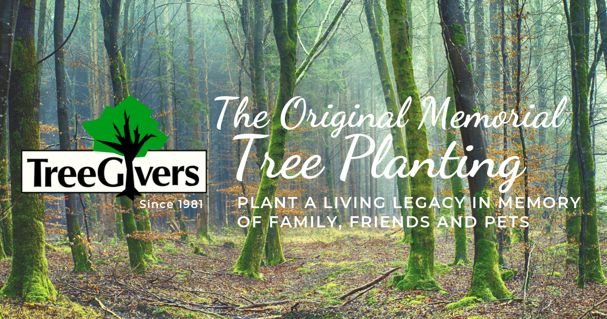 TreeGivers - Living Legacy Tree Planting | The Original