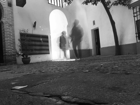 TRANSITOS_IMG_4727.jpg
