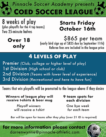 Coed Soccer League Flyer.png