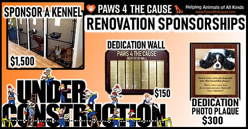 Rennovation Sponsorship FB.jpg