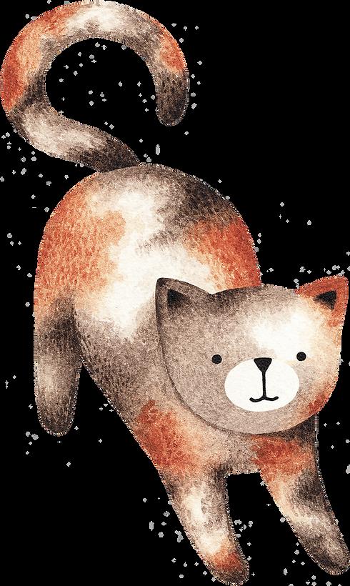 Tegning av Cat