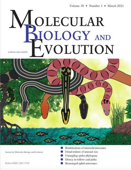 Rautsaw RM, Schramer TD, Acuña R, Arick LN, DiMeo M, Mercier KP, Schrum M, Mason AJ, Margres MJ, Strickland JL, Parkinson CL. 2020. Genomic adaptations to salinity resist gene flow in the evolution of Floridian watersnakes. Molecular Biology and Evolution. DOI: 10.1093/molbev/msaa266
