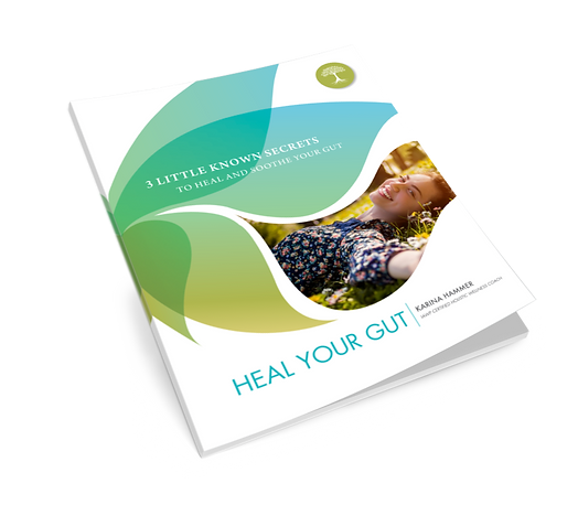 Heal your Gut Guide