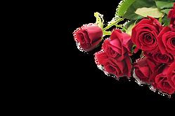 AdobeStock_32177318.png