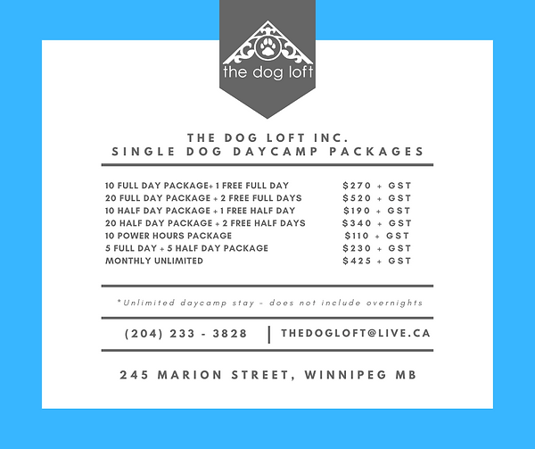 single dog packages.png
